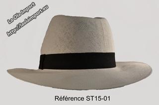 ST15-01-jpga_